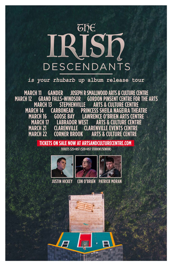 Irish Descendants Poster